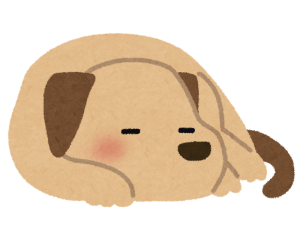 pet_dog_sleep.png